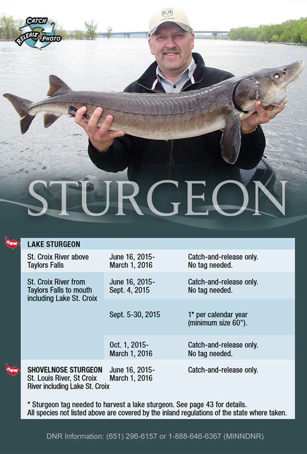 St. Croix River sturgeon season